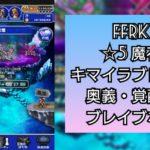 FFRKプレイ日記 魔石ダンジョン ☆5氷 キマイラブレインに勝ったってハナシ